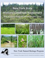 Wetland Condition Assessment report cover image.